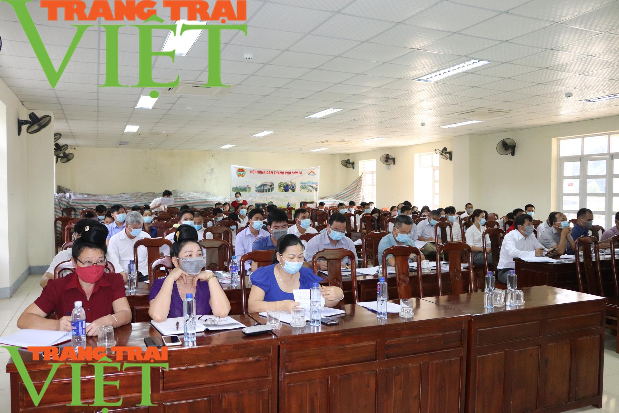 Hội Nông dân Sơn La: Làm tốt các hoạt động dịch vụ, tư vấn, dạy nghề, hỗ trợ nông dân - Ảnh 2.