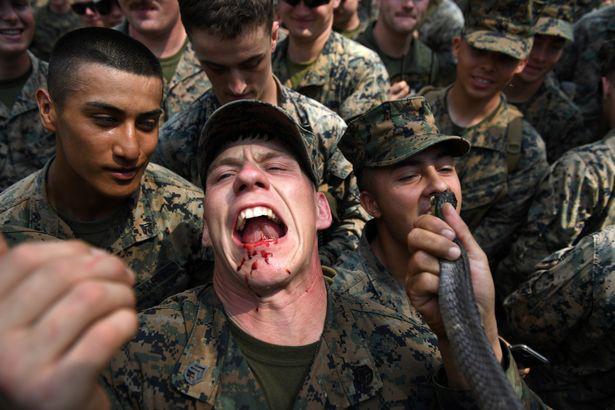 Ghê rợn cuộc tập trận đẫm máu của lính thủy đánh bộ 'có thể châm ngòi cho đại dịch tiếp theo' - Ảnh 2.