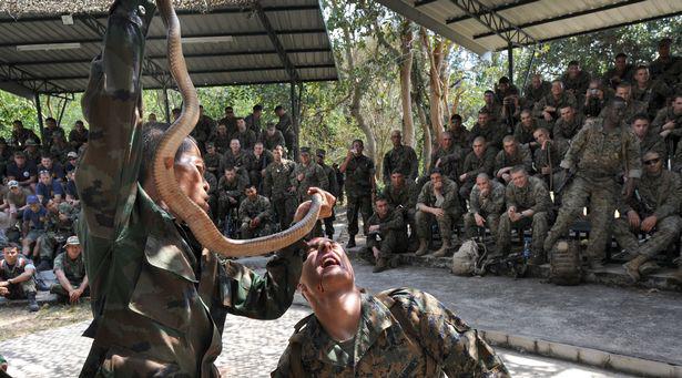 Ghê rợn cuộc tập trận đẫm máu của lính thủy đánh bộ 'có thể châm ngòi cho đại dịch tiếp theo' - Ảnh 3.