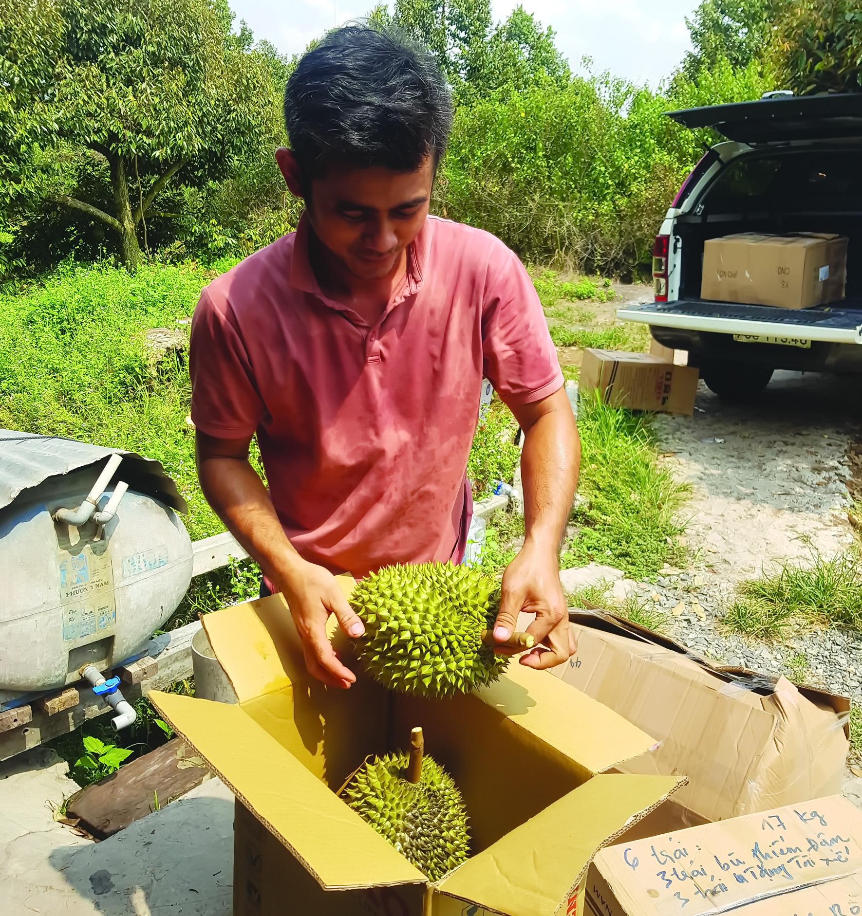 Tây Ninh: Nghe các nông dân phú tiết lộ bí quyết trồng mít Thái ra trái quanh năm, thu tiền tỷ - Ảnh 4.