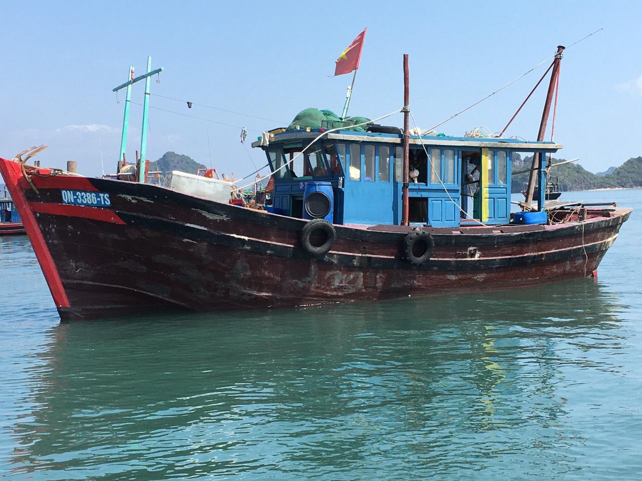 Vụ thi thể vợ chồng ngư dân trôi dạt trên vịnh Bái Tử Long: Có thể do tàu bị đâm va - Ảnh 1.