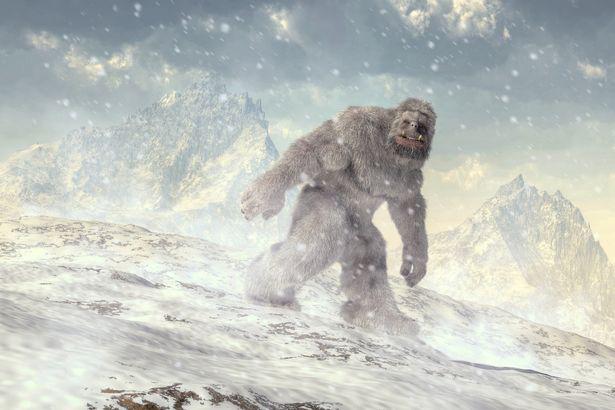 """Thợ săn quái vật đưa ra bằng chứng về sự tồn tại của """"Chân to"""" - Ảnh 3."""