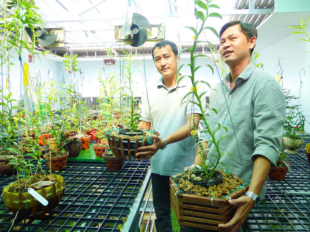 Hoa lan phi điệp đột biến 5 cánh trắng Phú Thọ trong vườn lan rừng của chàng trai An Giang, ai xem cũng trầm trồ - Ảnh 8.