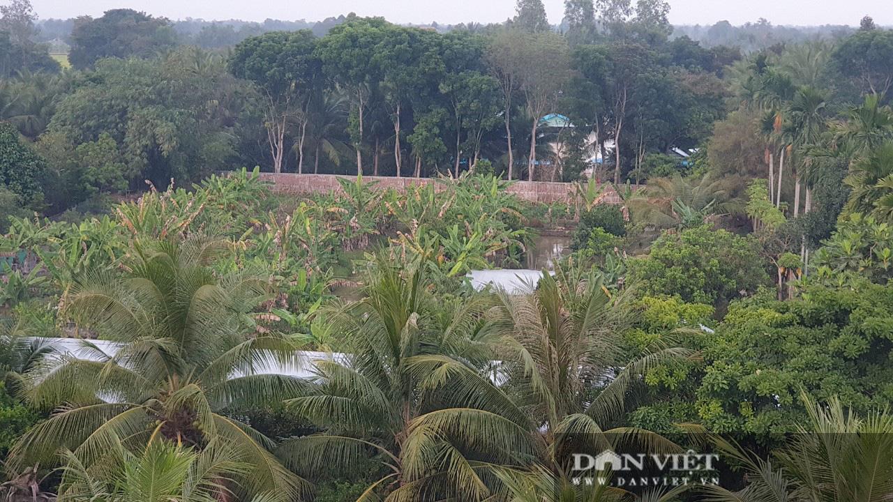 Bất ngờ phía sau quầy bán lươn của một nông dân Vĩnh Long là căn nhà 5 tỷ, thiết kế như chiếc du thuyền - Ảnh 3.