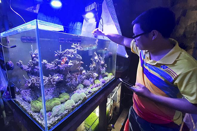 """Khánh Hòa: Nhà khoa học 9X nuôi loài san hô và mày mò ra cách kích thích san hô """"đẻ"""" nhân tạo là ai? - Ảnh 1."""
