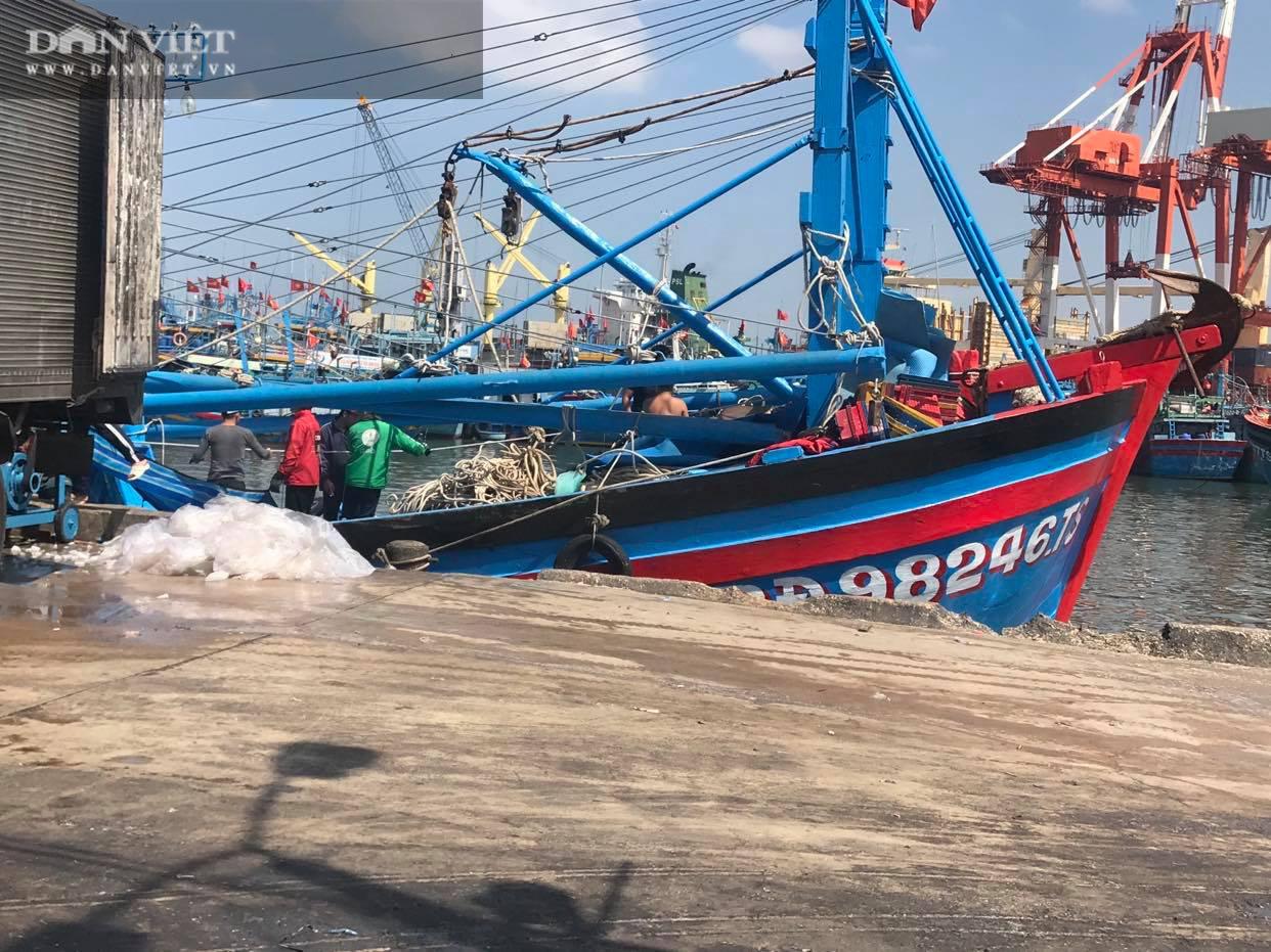 Ngư dân Bình Định đồng loạt xuất chuyến biển đầu năm - Ảnh 4.