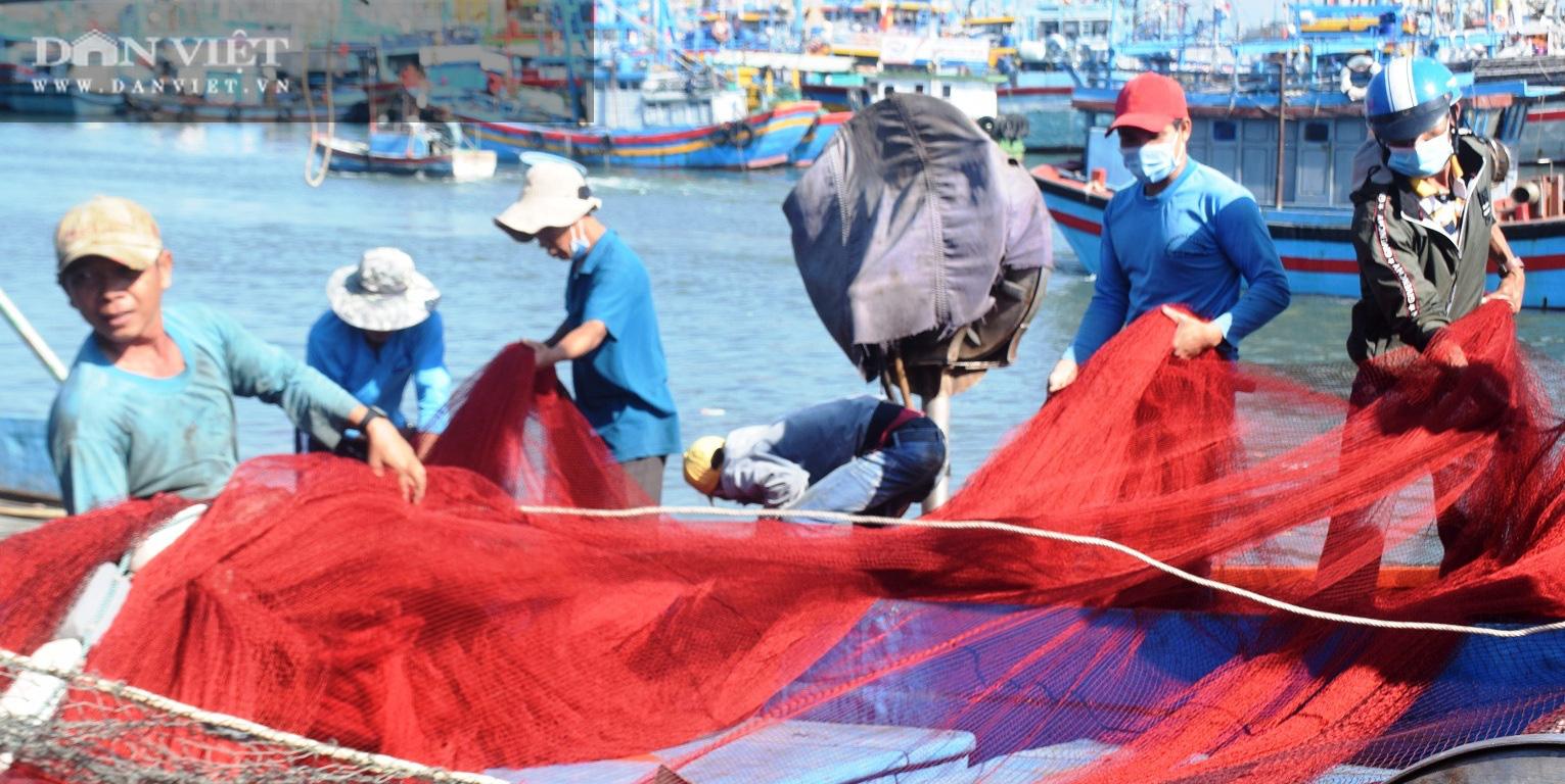 Ngư dân Bình Định đồng loạt xuất chuyến biển đầu năm - Ảnh 3.