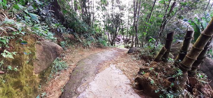 Lên đỉnh núi Cô Tô-1 trong 7 ngọn núi nổi tiếng nhất tỉnh An Giang sao lại thót tim, nín thở - Ảnh 2.