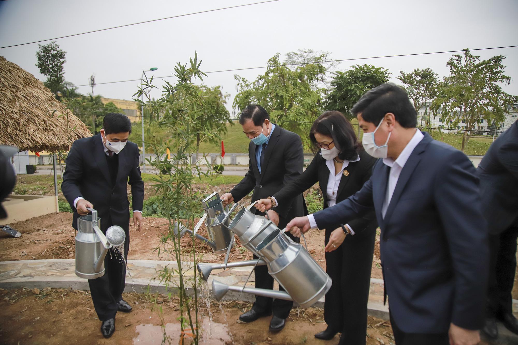 Tết trồng cây - Ảnh 2.
