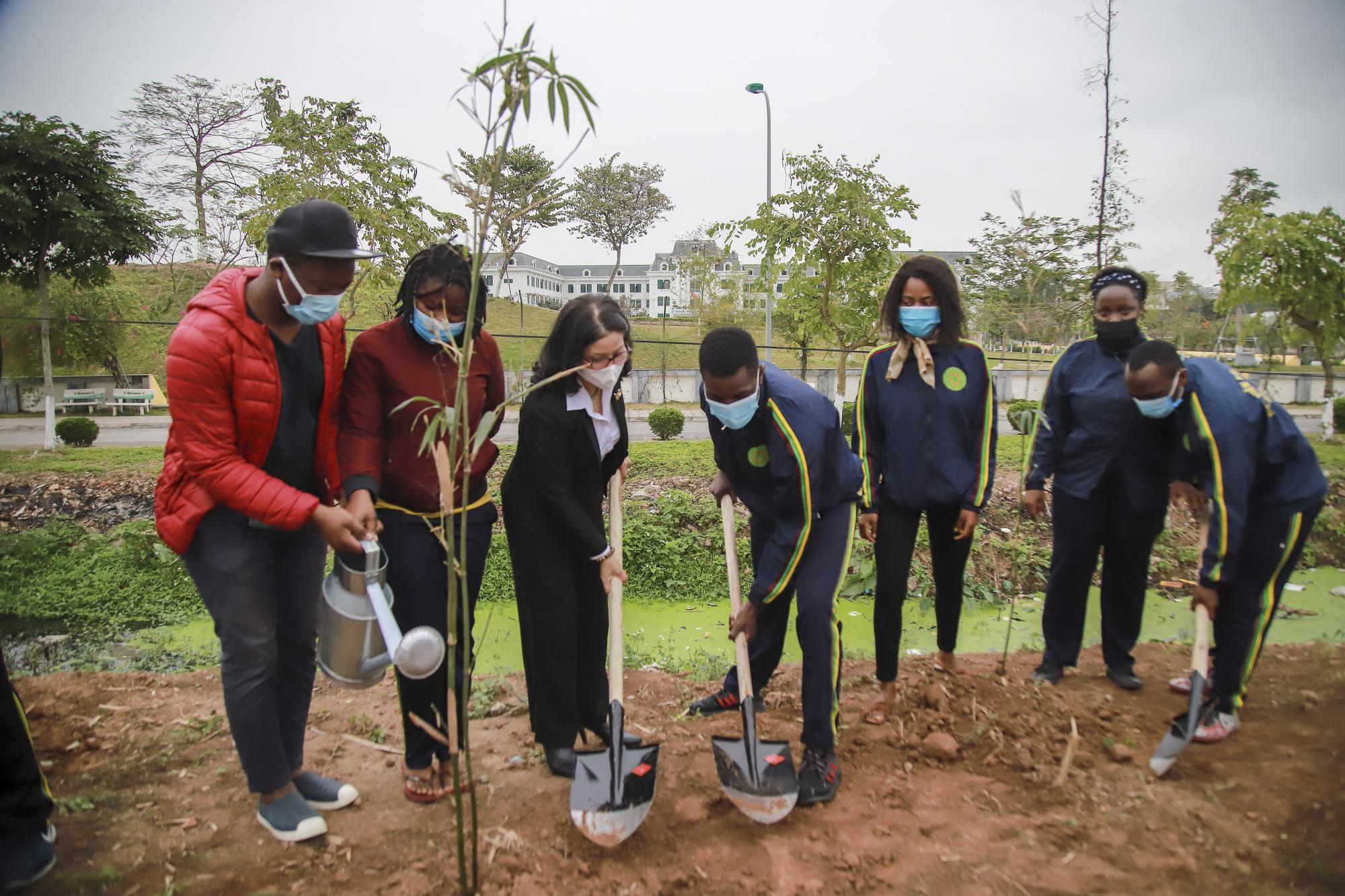 Tết trồng cây - Ảnh 4.