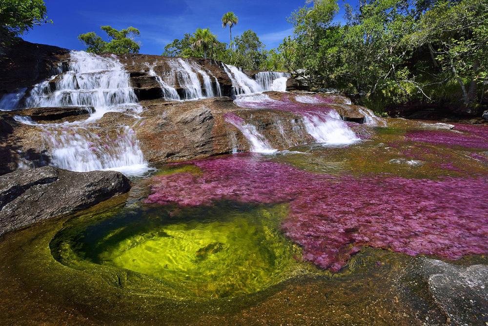 Sửng sốt trước vẻ đẹp của dòng sông ngũ sắc  - Ảnh 9.