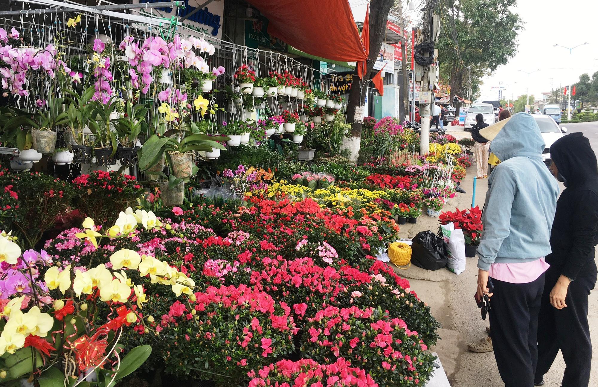 Những loại hoa, quả đẹp phục vụ Tết - Ảnh 4.