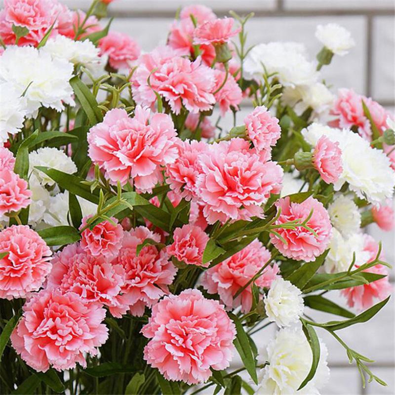 Bật mí loài hoa mang lại phúc lộc, tài danh cho 12 con giáp trong năm Tân Sửu 2021 - Ảnh 8.