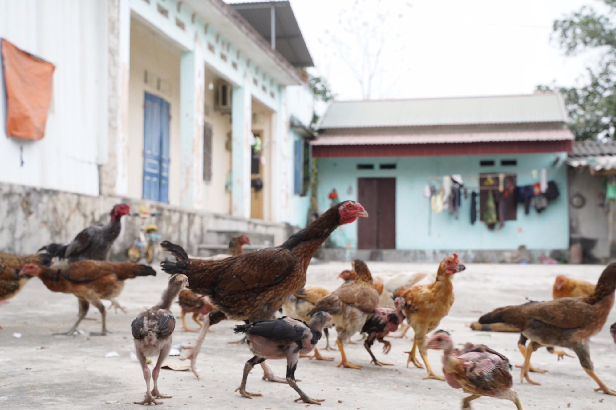 Tình làng trong tâm dịch Chí Linh - Ảnh 2.