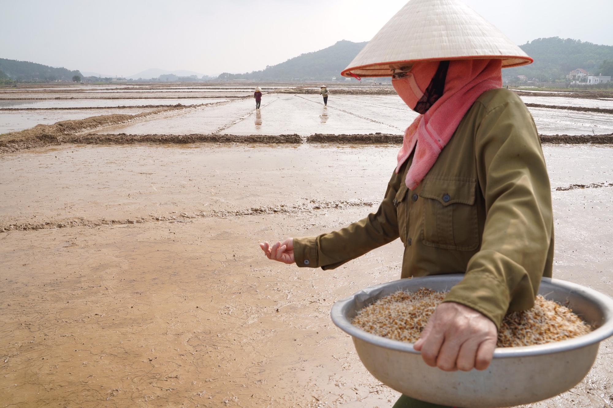 Tình làng trong tâm dịch Chí Linh - Ảnh 6.