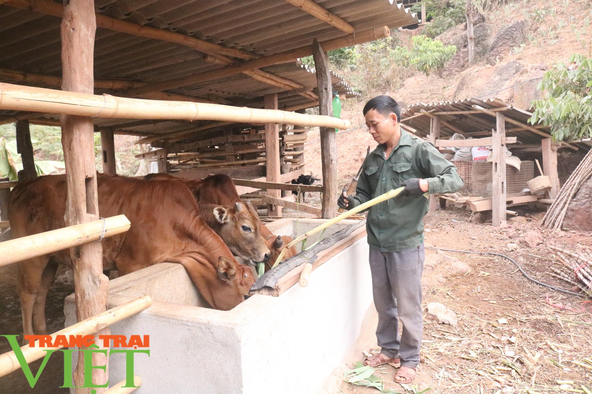 Mường Sại chú trọng phát triển chăn nuôi - Ảnh 2.