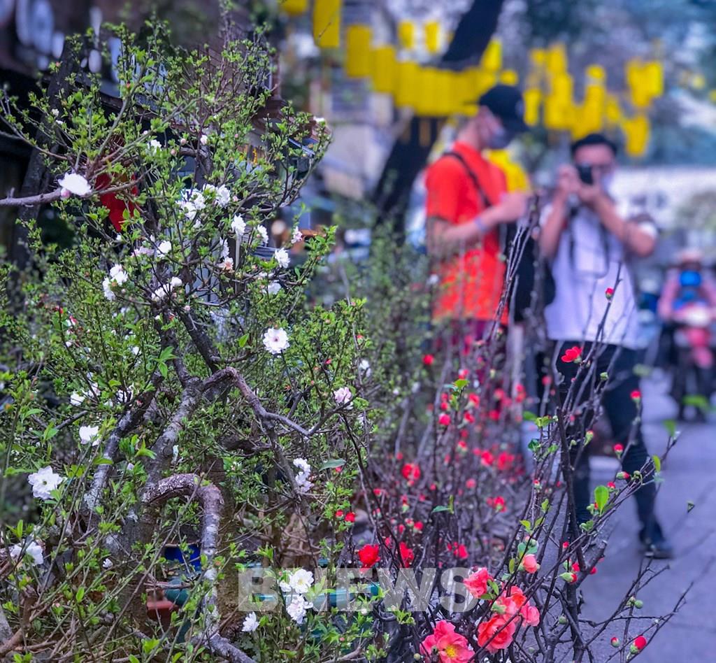 """Phiên chợ cực """"độc"""": Chỉ họp duy nhất 1 lần trong năm ở giữa lòng Thủ đô Hà Nội - Ảnh 3."""