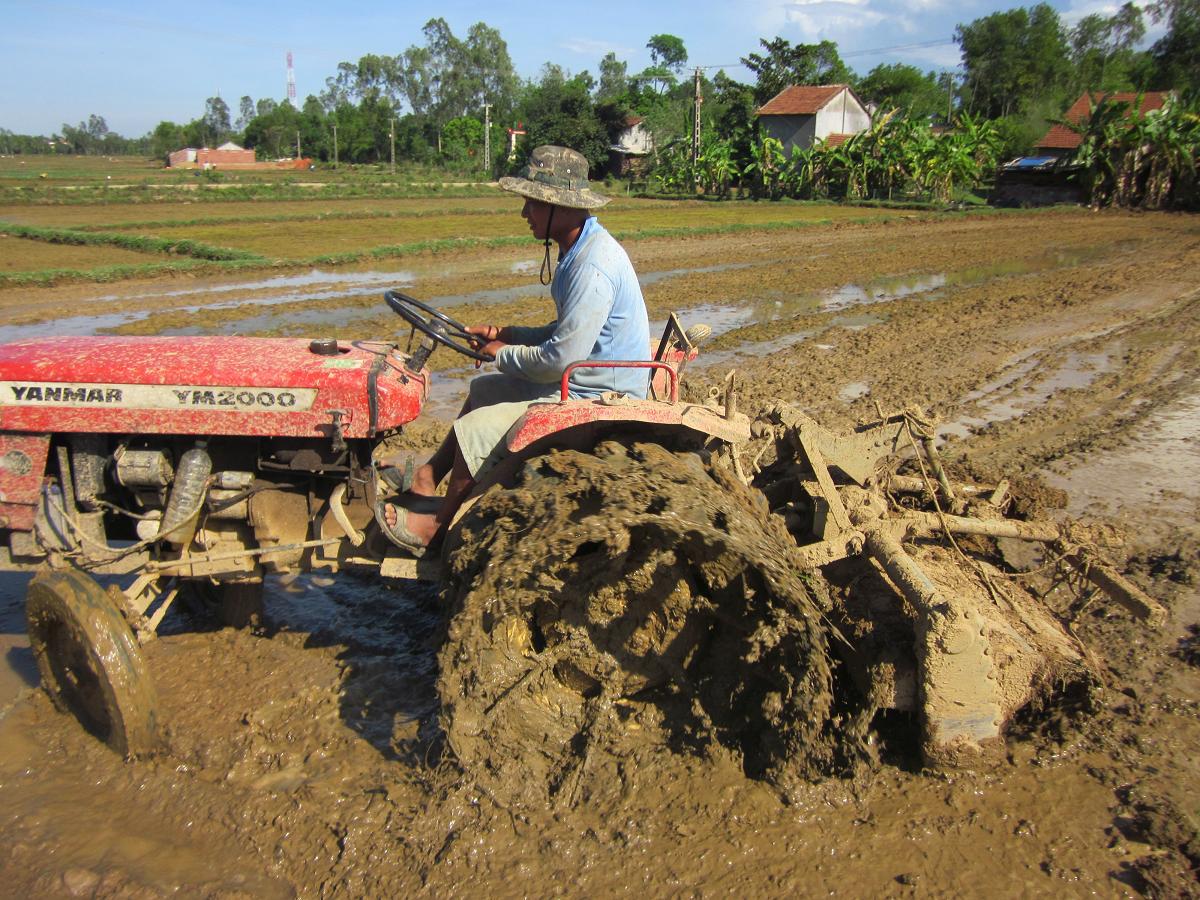 GĐ Sở NNPTNT tỉnh Quảng Nam - Đưa công nghệ cao vào giúp nông dân     - Ảnh 4.