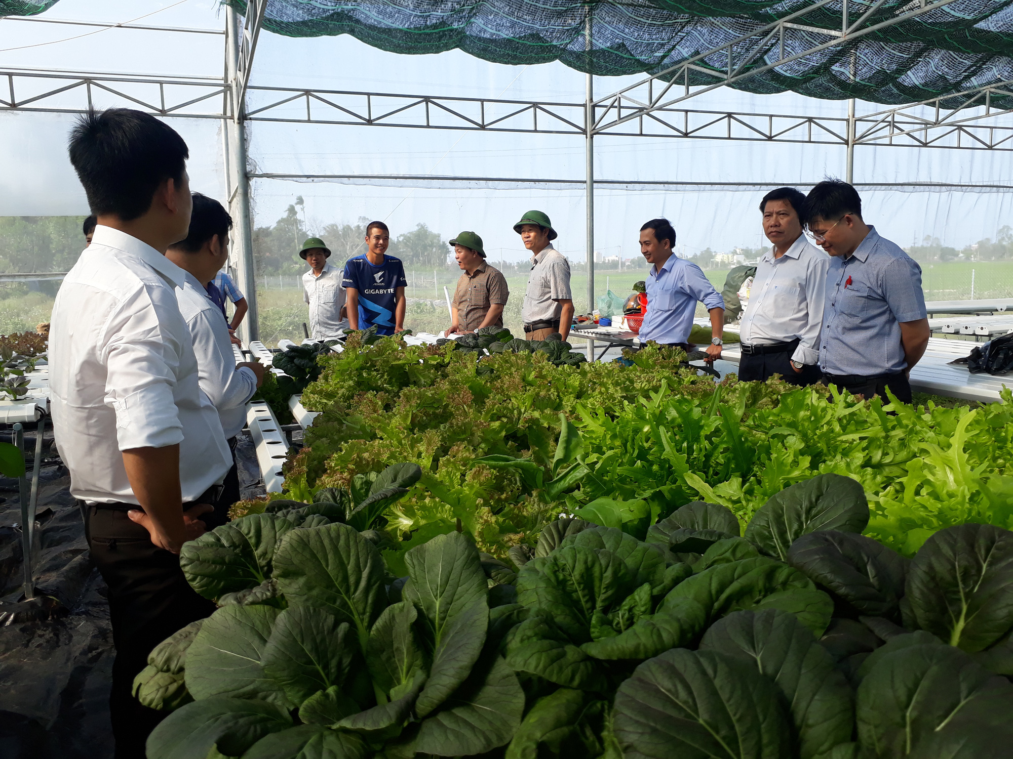 GĐ Sở NNPTNT tỉnh Quảng Nam - Đưa công nghệ cao vào giúp nông dân     - Ảnh 2.