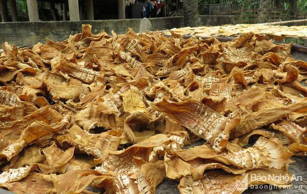 """Nghệ An: Thứ đặc sản vùng cao bỗng khan hiếm, giá 250.000 đồng/kg """"bói"""" không có để mua - Ảnh 5."""