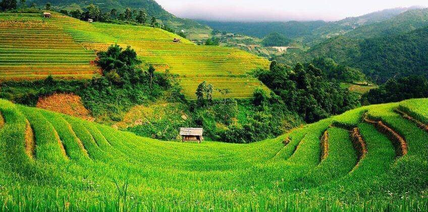 Mẫu đơn xin thuê đất nông nghiệp năm 2021 - Ảnh 1.