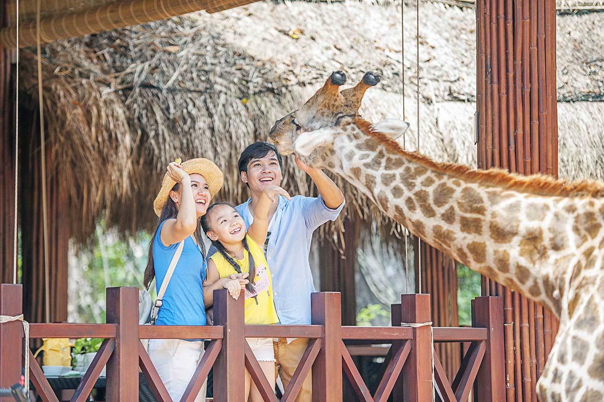 Mê mẩn ngắm sư tử con, hổ... và những góc ảnh dễ thương tại vườn thú bán hoang dã Phú Quốc - Ảnh 9.