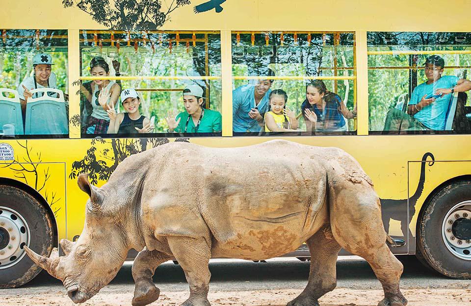Mê mẩn ngắm sư tử con, hổ... và những góc ảnh dễ thương tại vườn thú bán hoang dã Phú Quốc - Ảnh 10.