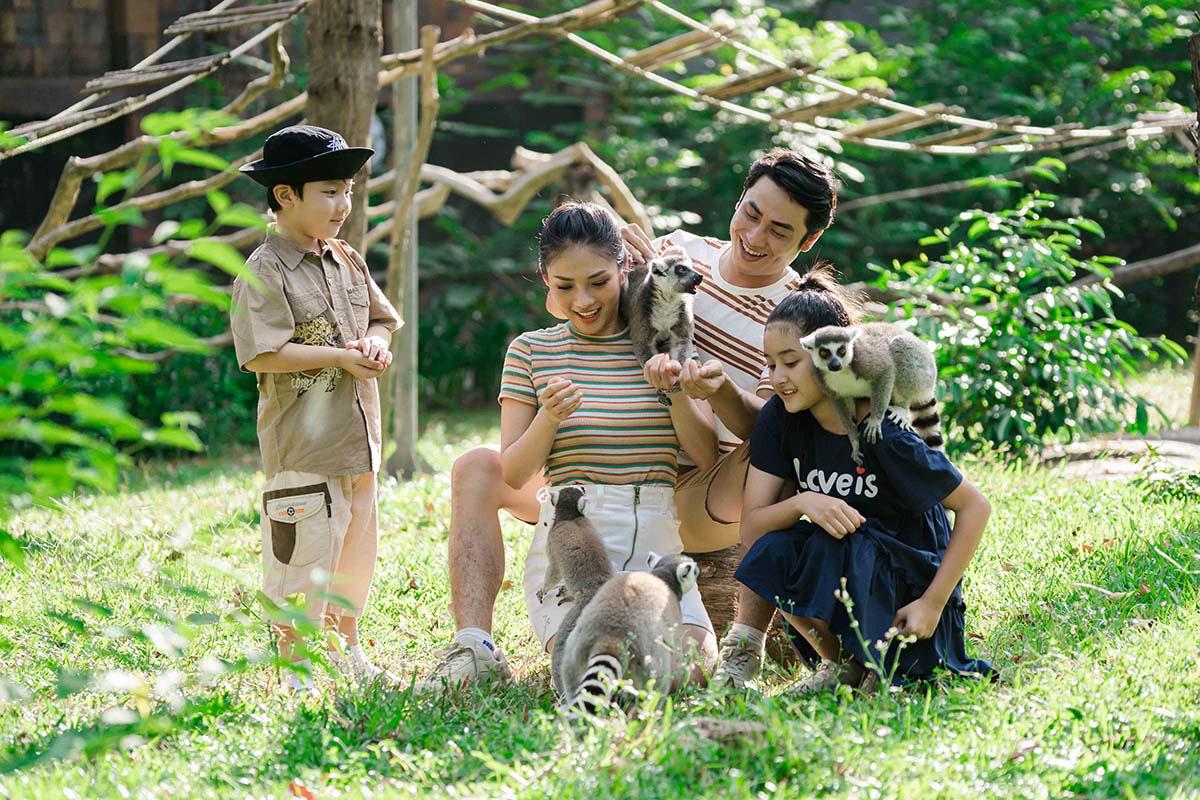 Mê mẩn ngắm sư tử con, hổ... và những góc ảnh dễ thương tại vườn thú bán hoang dã Phú Quốc - Ảnh 13.