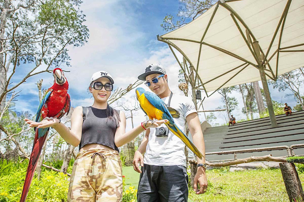 Mê mẩn ngắm sư tử con, hổ... và những góc ảnh dễ thương tại vườn thú bán hoang dã Phú Quốc - Ảnh 5.
