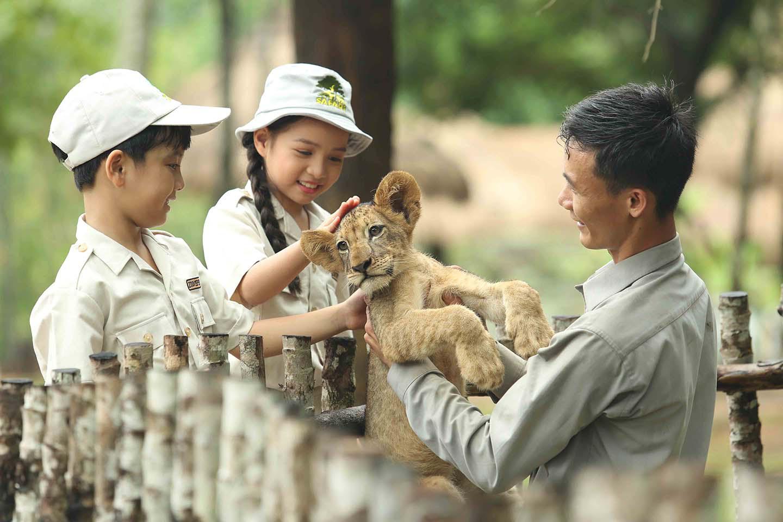 Mê mẩn ngắm sư tử con, hổ... và những góc ảnh dễ thương tại vườn thú bán hoang dã Phú Quốc - Ảnh 1.