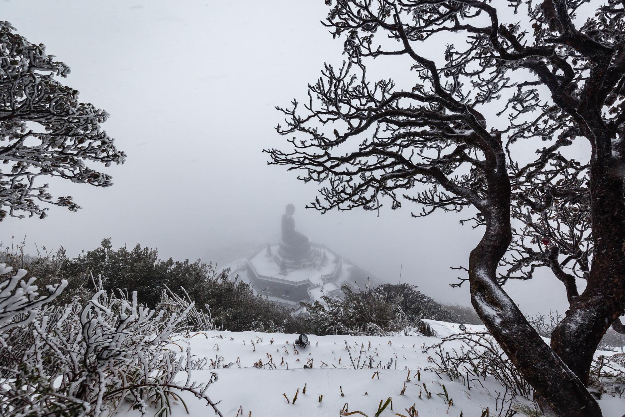 Sapa: Tuyết phủ dày 60cm trắng trên đỉnh Fansipan - Ảnh 2.