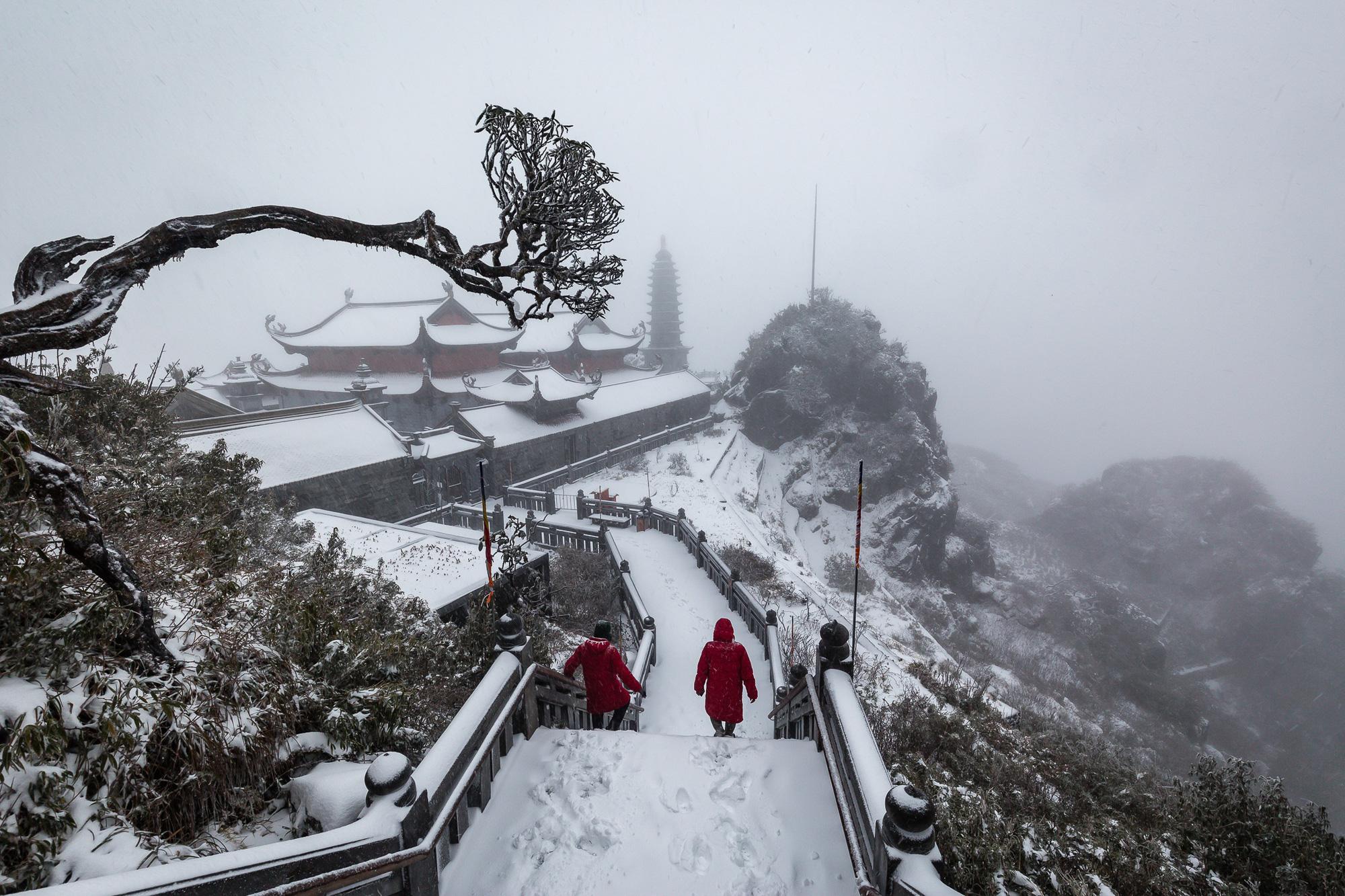 Sapa: Tuyết phủ dày 60cm trắng trên đỉnh Fansipan - Ảnh 5.