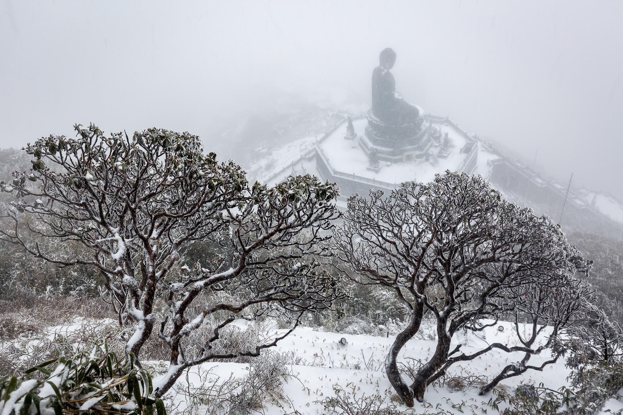 Cảnh đẹp mê ly trên đỉnh Fansipan trong ngày tuyết rơi dày chưa từng có - Ảnh 6.