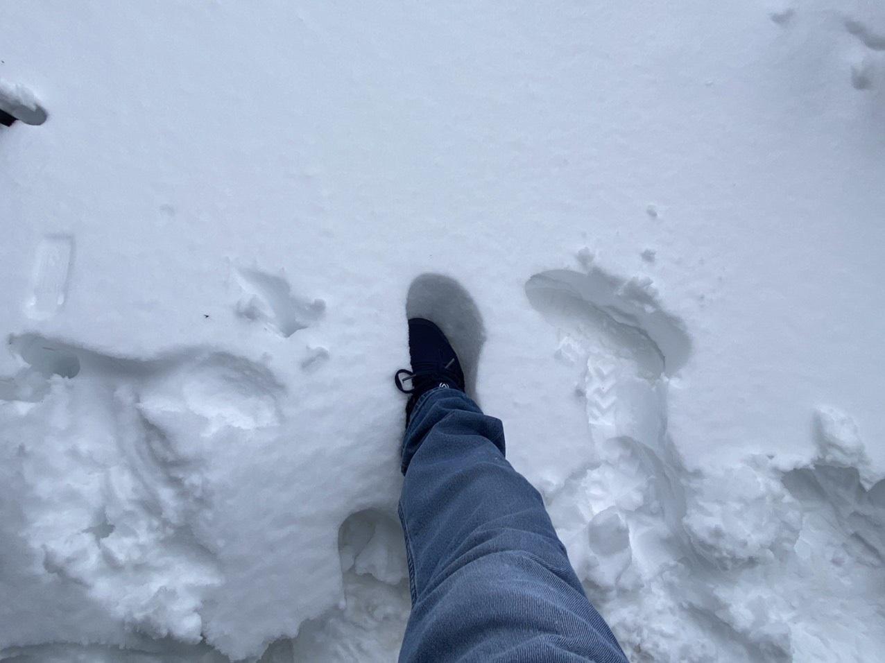 Sapa: Tuyết phủ dày 60cm trắng trên đỉnh Fansipan - Ảnh 11.