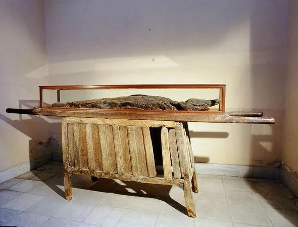Rợn người nghi thức ướp xác cá sấu đáng sợ của người Ai Cập cổ - Ảnh 2.
