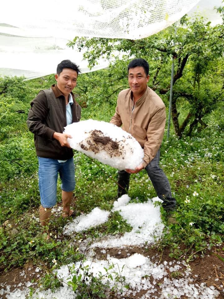Sơn La: Mưa đá, giông lốc gây thiệt hại nặng - Ảnh 3.