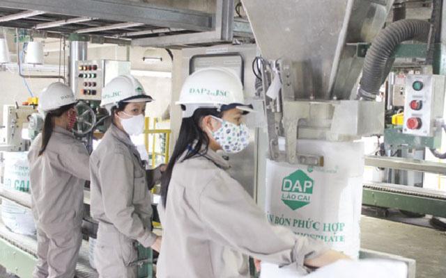 Giá phân bón DAP tăng nóng, vẫn tranh cãi chuyện nên hay không áp thuế tự vệ - Ảnh 2.