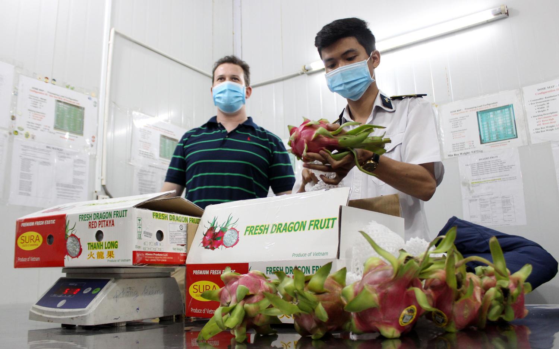 Trung Quốc đột nhiên mua nhiều trái cây của Việt Nam, loại quả nào được mua nhiều nhất? - Ảnh 1.