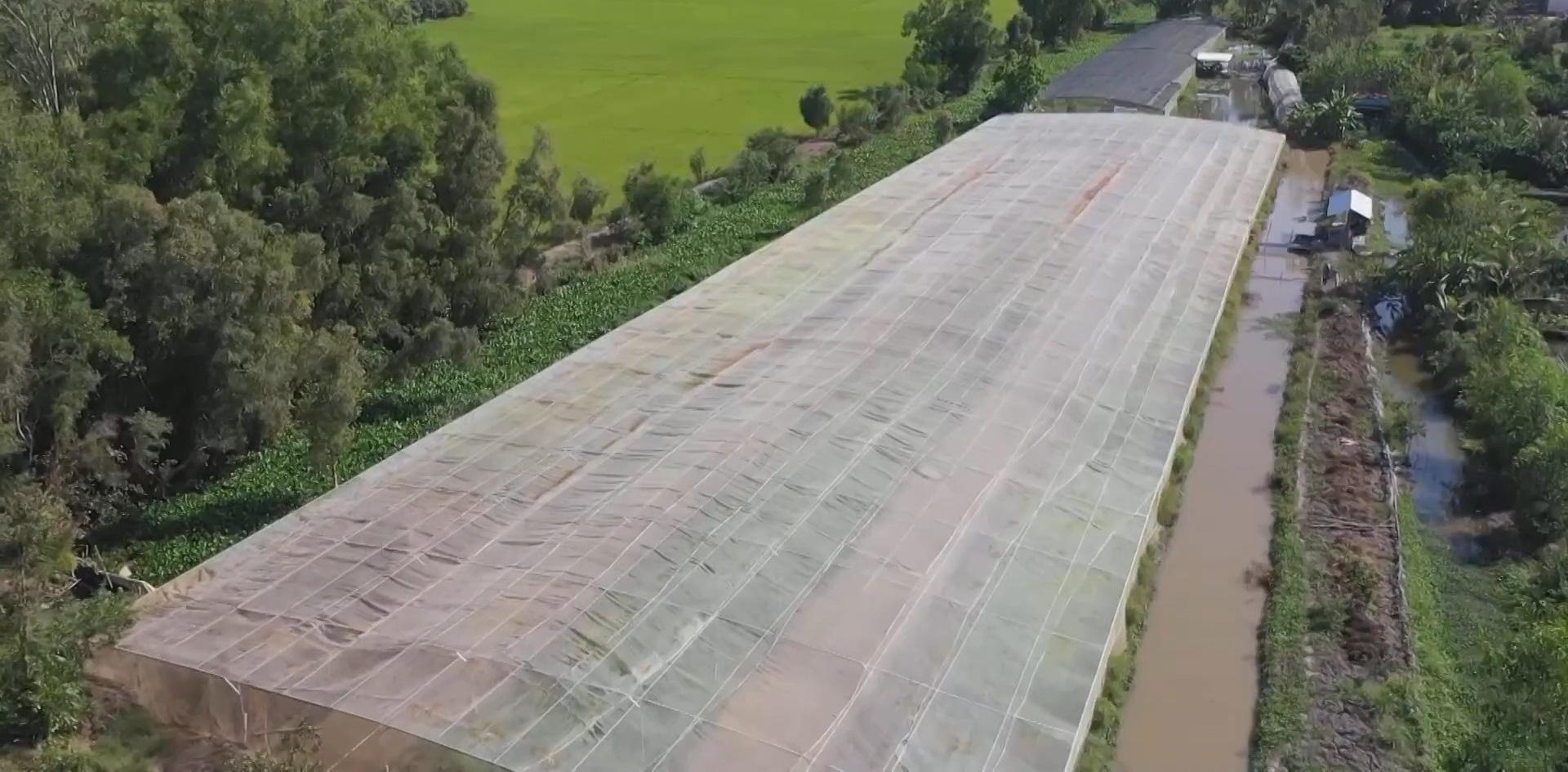 Áp dụng công nghệ 4.0 trồng rau sạch, anh nông dân ung dung thu về 200 triệu/năm - Ảnh 2.