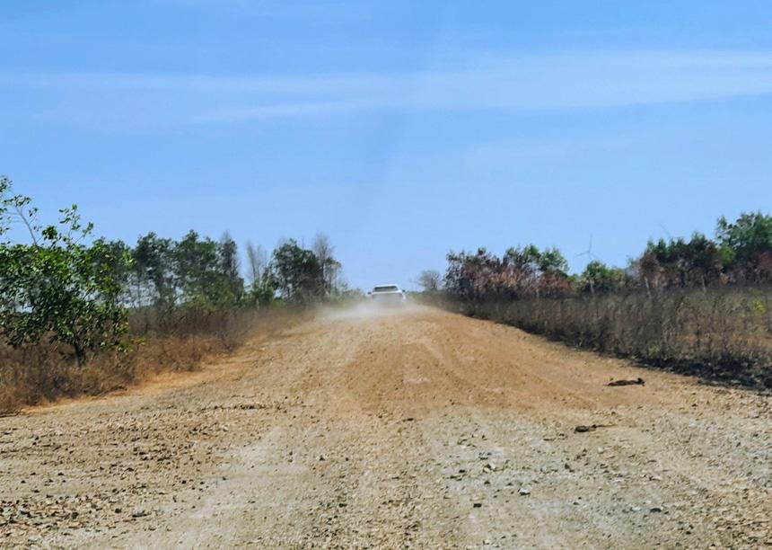 'Cò đất' nườm nượp đổ về sân bay Phan Thiết - Ảnh 2.