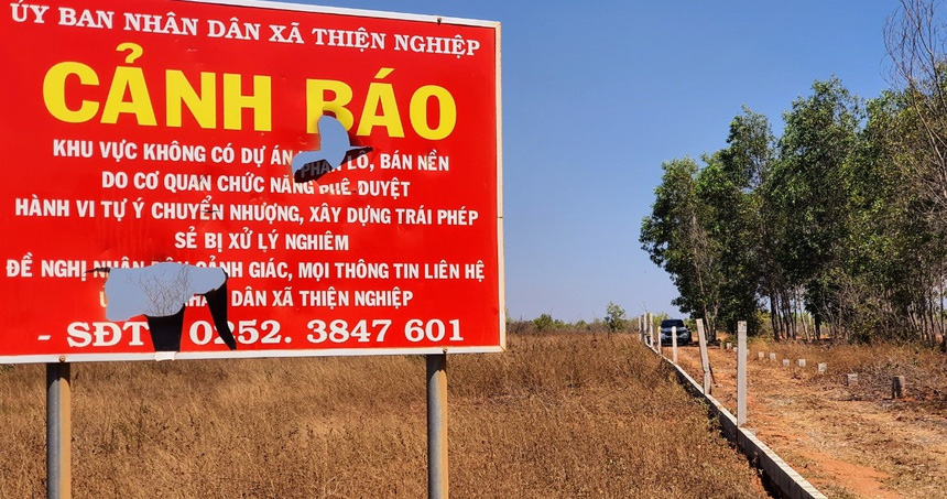 'Cò đất' nườm nượp đổ về sân bay Phan Thiết - Ảnh 3.