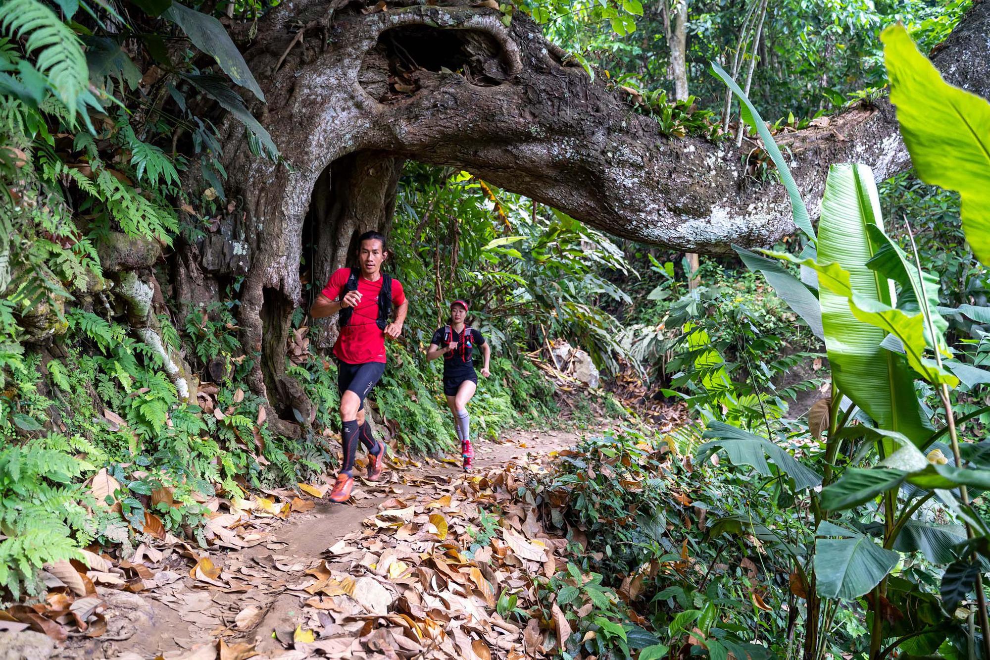 Bắc Kạn tổ chức giải chạy Ba Bể Jungle Marathon nhằm quảng bá du lịch - Ảnh 1.