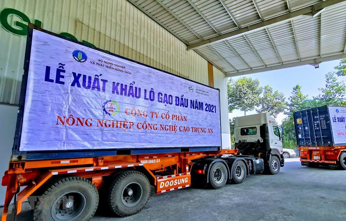 Bộ NNPTNT mong hải quan làm việc ngoài giờ, tránh tắc nghẽn nông sản ở cửa khẩu - Ảnh 2.