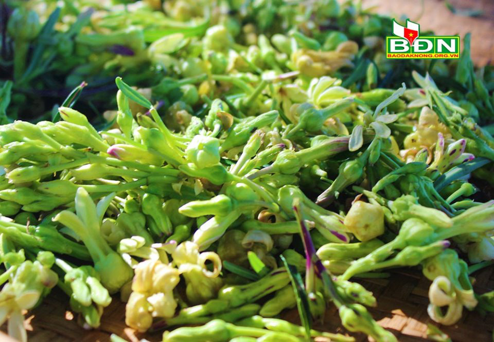 Gia Lai: Cá lăng đặc sản nấu với hoa, lá của loài cây tên rất lạ, thực khách trầm trồ vì quá ngon - Ảnh 1.