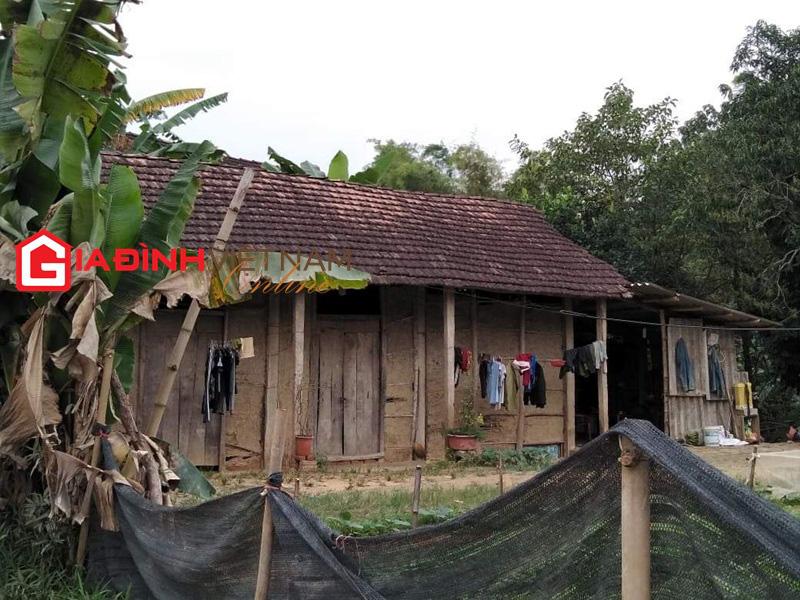 Nữ sinh Tuyên Quang ở nhà vách đất, thủ khoa tỉnh, đỗ Đại học Y Hà Nội - Ảnh 2.