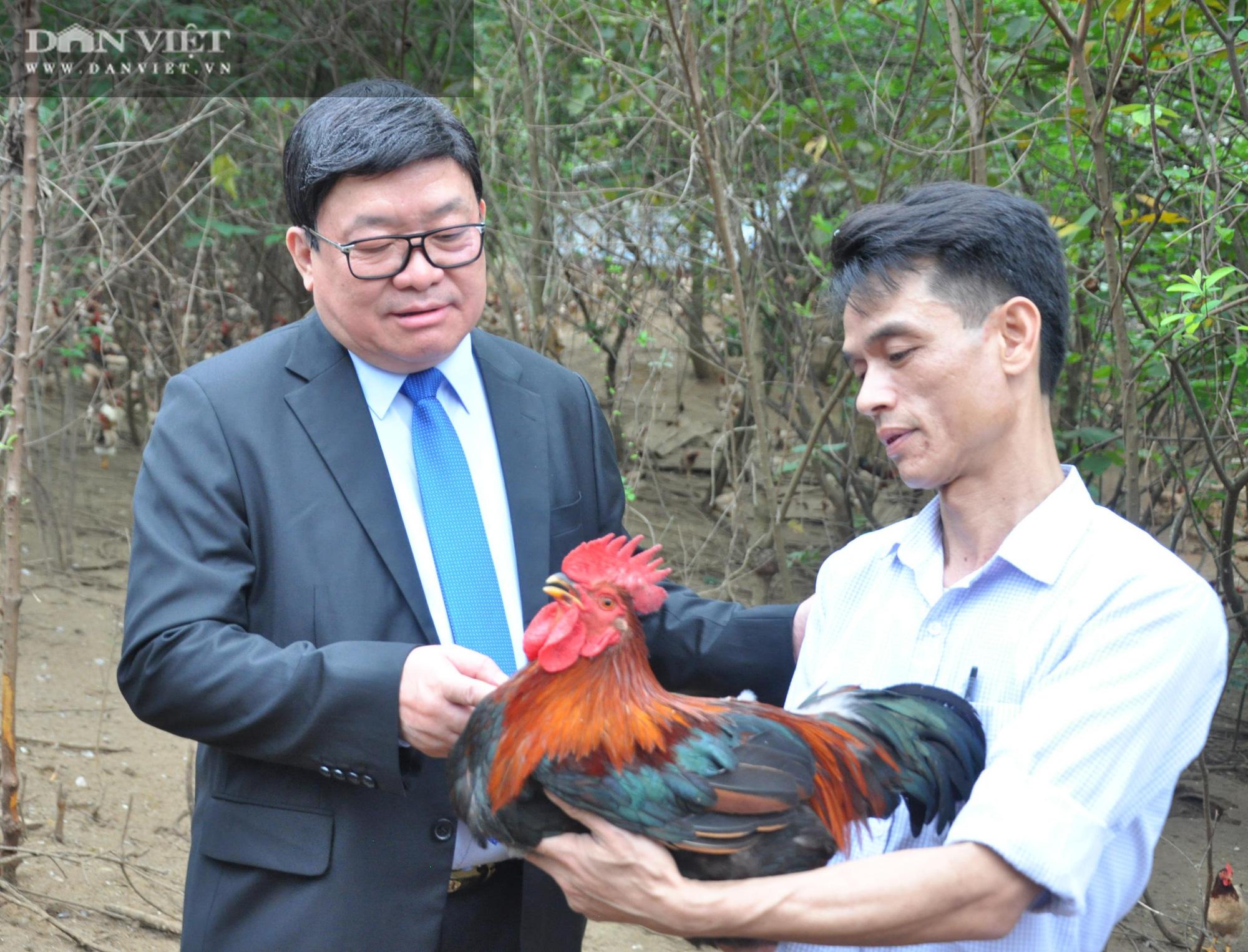 Chủ tịch Hội Nông dân Việt Nam vượt hàng đá thăm trang trại nuôi con đặc sản thu gần 7 tỷ đồng/năm ở Hòa Bình - Ảnh 6.