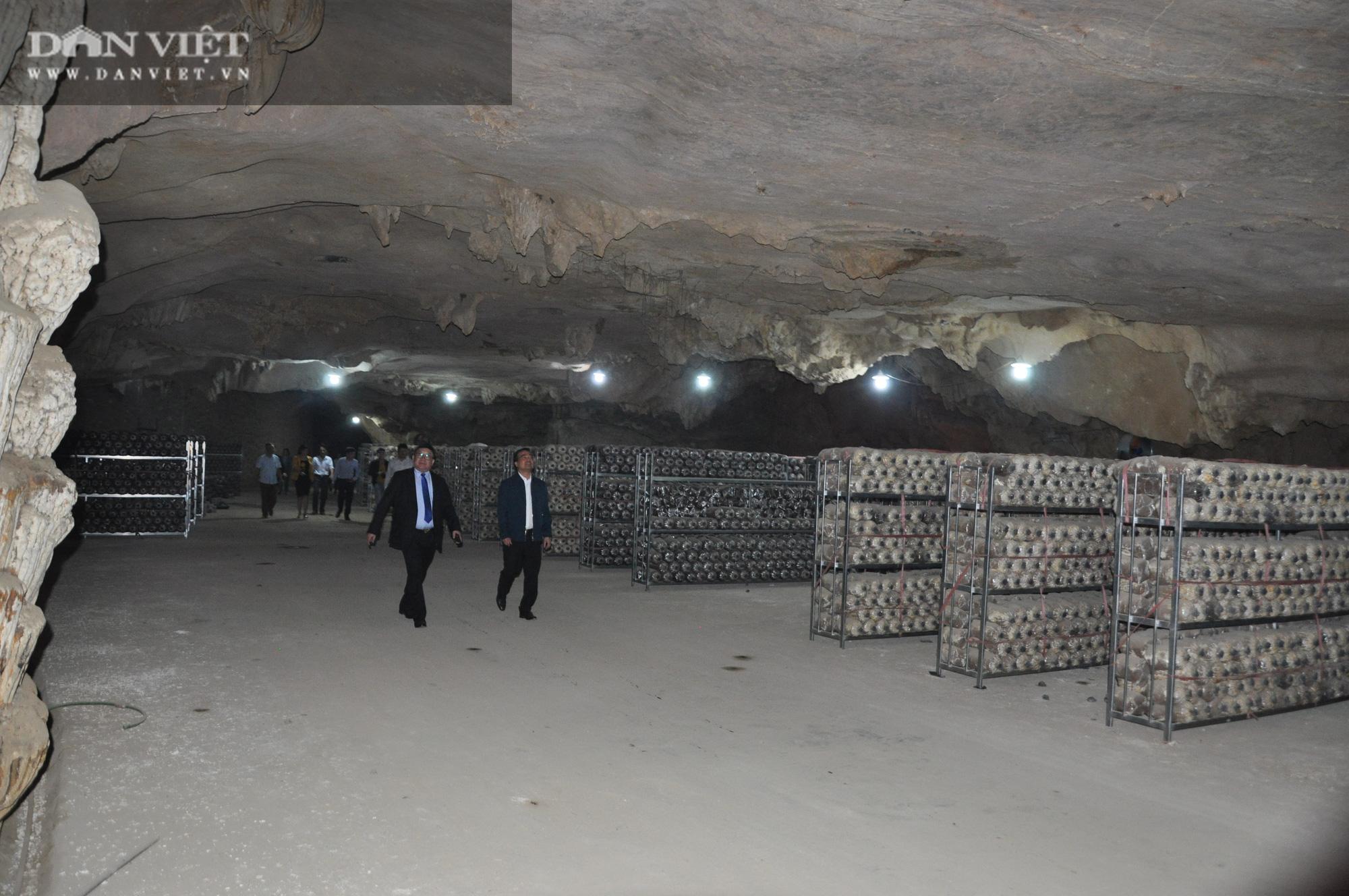 Chủ tịch Hội Nông dân Việt Nam vào hàng đá thăm trang trại nuôi con đặc sản năm thu gần 7 tỷ đồng - Ảnh 1.
