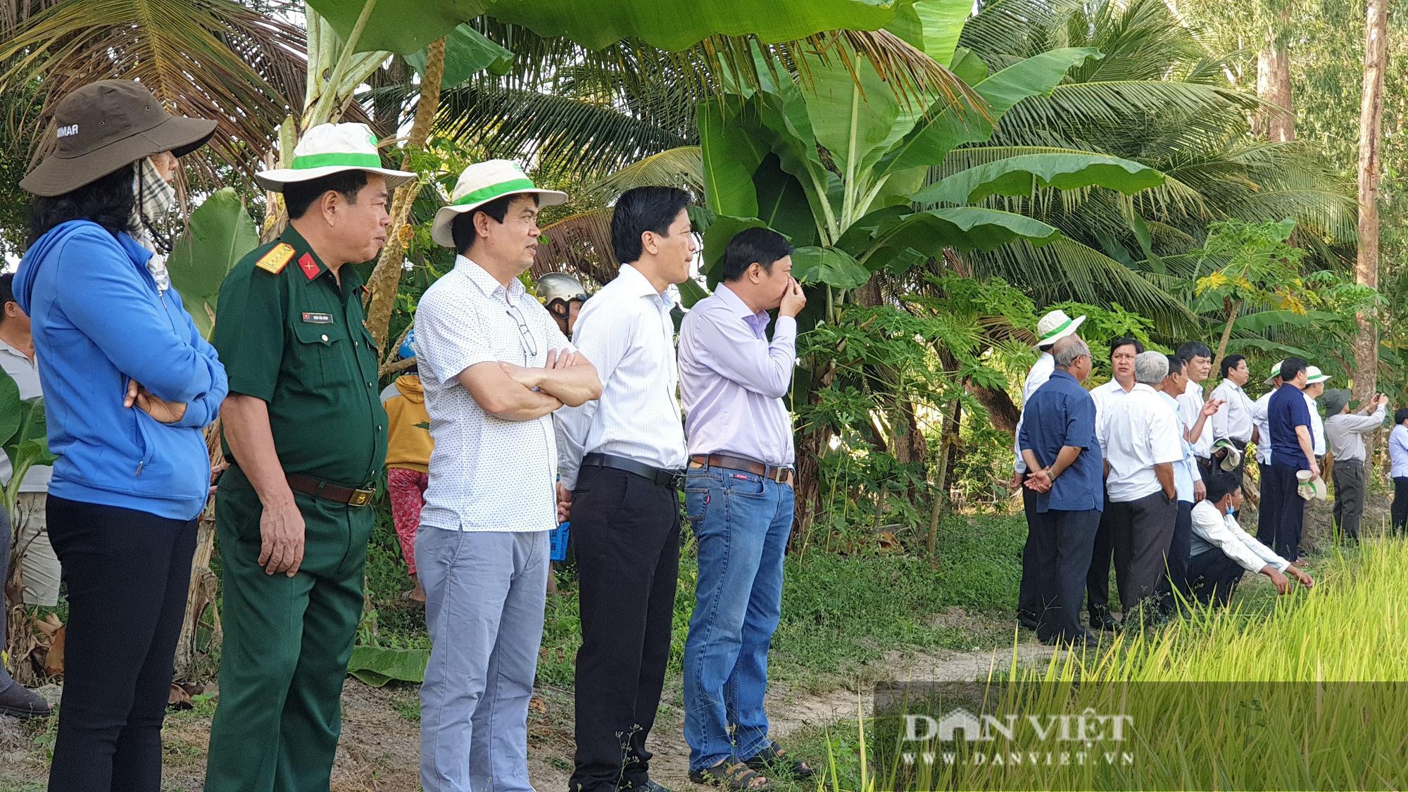 Hậu Giang: Trình diễn sử dụng máy bay không người lái HLD-18 phun thuốc bảo vệ thực vật trên lúa - Ảnh 5.
