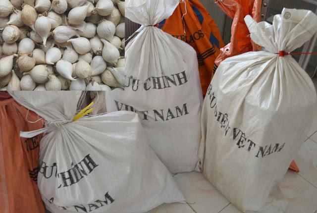 Quảng Ngãi: Không phân biệt hoạt động giữa Viễn thông và Bưu điện, huyện xin lỗi VNPT   - Ảnh 2.