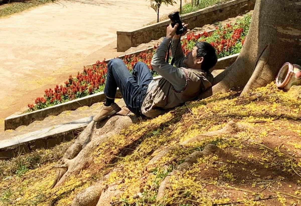 """Lâm Đồng: Độc đáo với hoa phượng vàng nở bung, """"tỏa nắng"""" khiến du khách ngẩn ngơ - Ảnh 6."""
